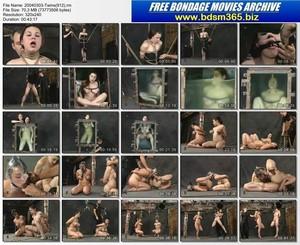 Insex Videos 2