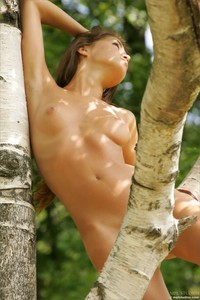 Syndi - Birch Grove  z6rqqgjc6d.jpg