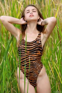 Elle-Hiding-In-The-Grass--d6ta53ovee.jpg