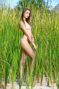 Elle-Hiding-In-The-Grass--a6ta55llef.jpg