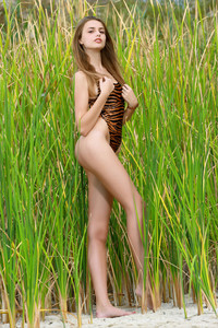 Elle-Hiding-In-The-Grass--j6ta53q03i.jpg
